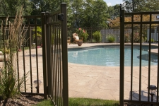 Gate fence accidents injuries for Swimming pool fencing regulations qld